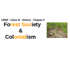 CBSE : Class IX : History : Forest Society & Colonialism : Explain the provision of Forest Act passed by the Dutch ?