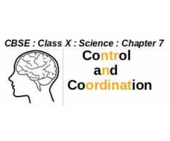 CBSE : Class X : Science : Chapter 7 : Control and Coordination : Question and Answer