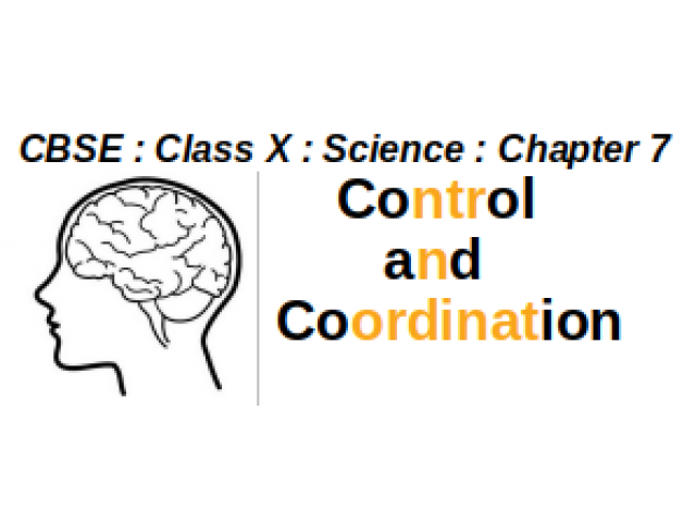 CBSE : Class X : Science : Chapter 7 : Control and Coordination : Write short notes on Human Nervous System.