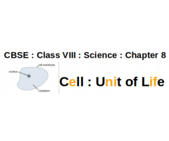 CBSE : Class VIII : Science : Chapter 8 : Cell : Unit of Life : What are Eukaryotic and Prokaryotic Cells ?