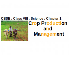CBSE - CLASS VIII - Science -- Chapter 1 : Crop Production and Management : What is agriculture ?